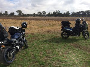 West Wyalong Showgrounds campsite